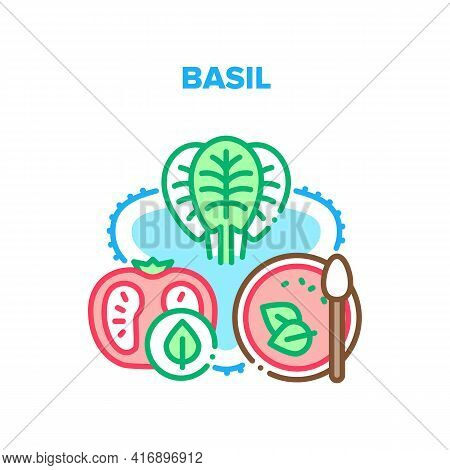 Basil Vector Icon Concept. Basil And Tomato Agricultural Vitamin Ingredients For Cooking Delicious S