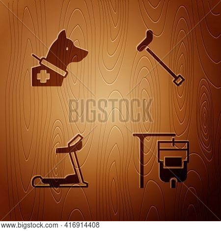 Set Iv Bag, Guide Dog, Treadmill Machine And Walking Stick Cane On Wooden Background. Vector