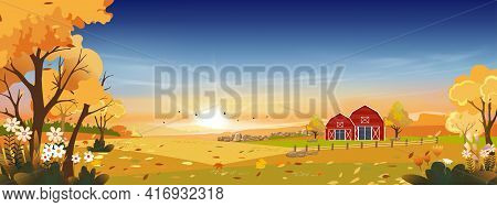 Autumn Landscapes Of Countryside In Evening Sunset With Orange Sky,panoramic Of Mid Autumn In Farm F