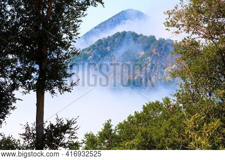 Lush Alpine Forest On A Mountainous Slope Surrounded By Rural Canyons And Ridges Covered With Stratu