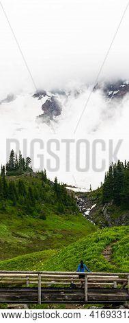 Awe Inspiring Foggy Mount Rainier In Washington State
