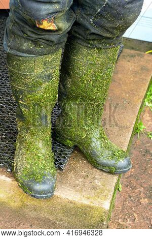 After Mowing The Grass, Dirty Boots. Boots In The Grass. Worker Mowing Tall Grass With Electric Or P