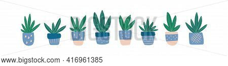 Modern Home Decor With Hand-drawn House Plant Succulent. Trendy Cute Cactus In Colorful Pot. Urban J