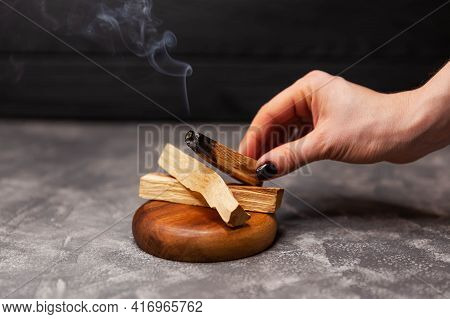 Organic Holy Tree Incense From Latin America. Scattered Sticks Of Palo Santo Tree On Grey Background