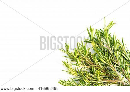 Fresh Rosemary Leaves Isolated On White Background With Top Left Copy Space