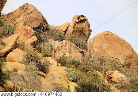 Chaparral Plants Surrounding Large Rocks And Boulders Caused From Erosion On An Arid Hillside Taken