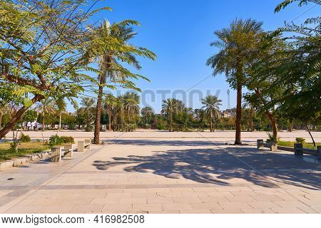 Sunny Day In An Empty Deserted Park With Palms And Green Trees