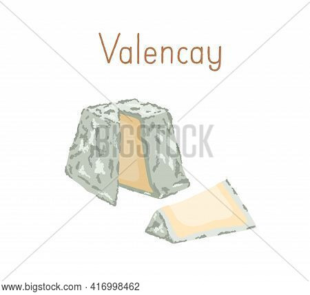 Gourmet French Valencay Cheese With Blue Moldy Rind. Cut Piece Of Delicious Soft Chees With Mold. Co