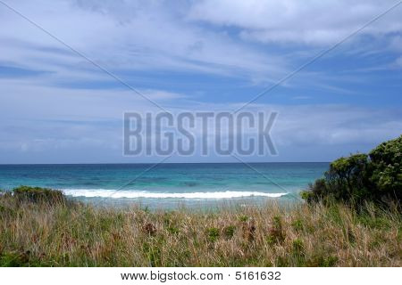 Sky Sea Grass