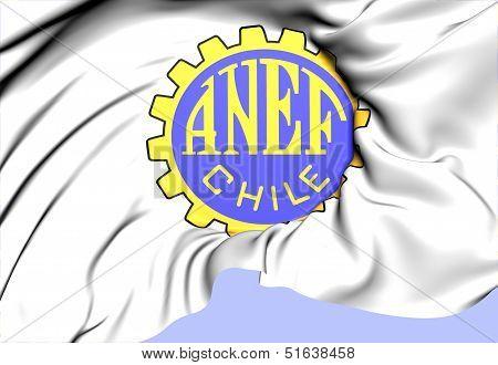 Emblem Of Anef