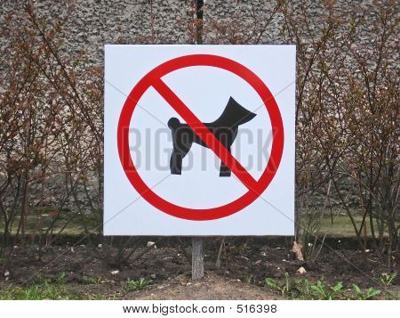 poster of sign – dogs not allowed.