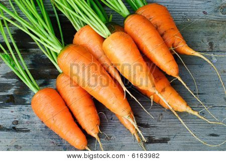 Carrot Bunches