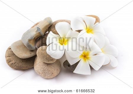 Isolated Of The Balance Stones With Frangipani Flower Is Zen For Spa On White Background