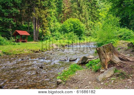 Forest River With Stones, Moss And Stump