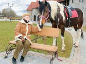 elderly woman sit on bench near her stay horse poster