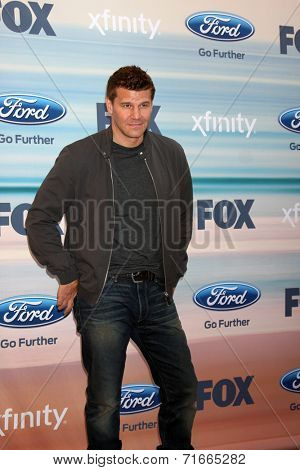 LOS ANGELES - SEP 8:  David Boreanaz at the 2014 FOX Fall Eco-Casino at The Bungalow on September 8, 2014 in Santa Monica, CA
