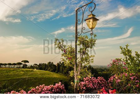 Lamp On Green View