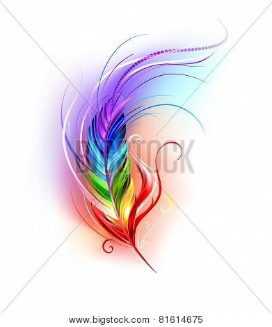 Rainbow Feather On White Background