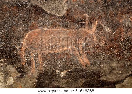 Bushmen (san) rock painting of an antelope, Karoo region, South Africa
