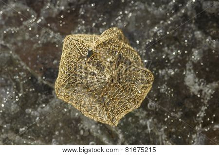 Physalis lantern on spotted ice background