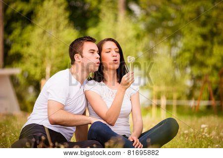 Happy life - couple blowing dandelions
