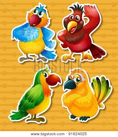 Four different kind of birds on yellow background