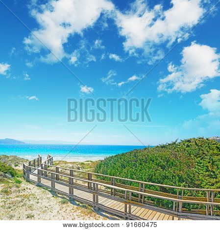 Wooden Boardwalk By The Shore In Capo Testa