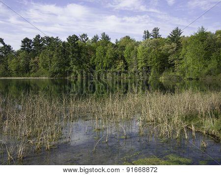 Marl Lake