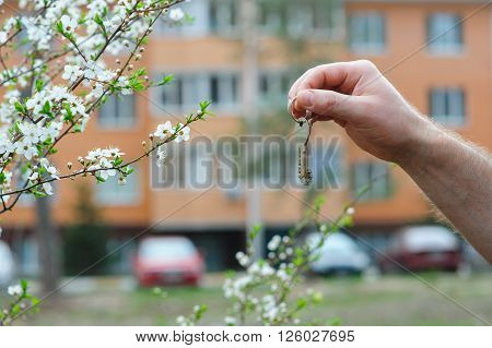 Hand of broker holding key to a dream house.