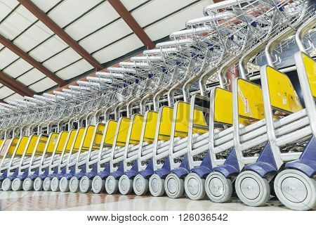 number of luggage carts at modern airport.