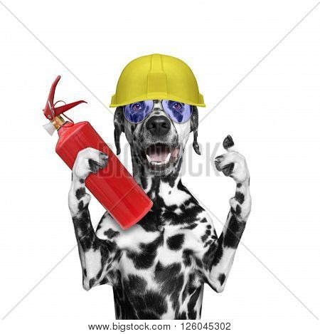 Dog rescuer volunteer firefighter -- isolated on white