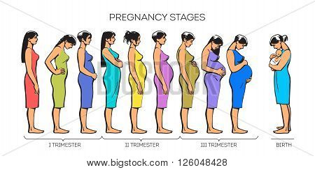 Stages of pregnancy. image of stages of pregnancy. Pregnant woman. Motherhood. Trimester of pregnancy. Nine months of pregnancy. Image of different pregnant women. color illustrations