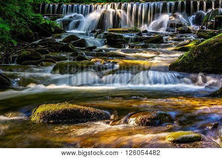 Forest Stream  Splashes On The Rock Cascade