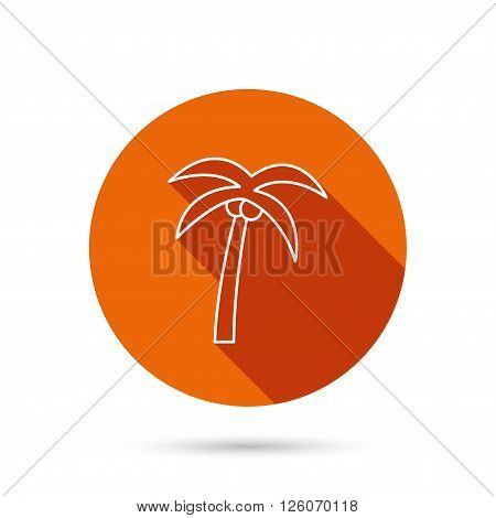 Palm tree with coconuts icon. Travel or vacation symbol. Nature environment sign. Round orange web button with shadow.