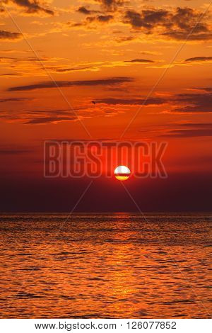 red sunset over the water. the rays of the setting sun reflected on the water surface
