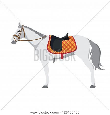 Equestrian sport. Illustration of horse. Vector. Thoroughbred horse. The Sport of Kings. Horse with Saddle