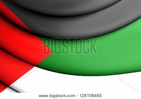 Kingdom Of Hejaz Flag (1917-1920)