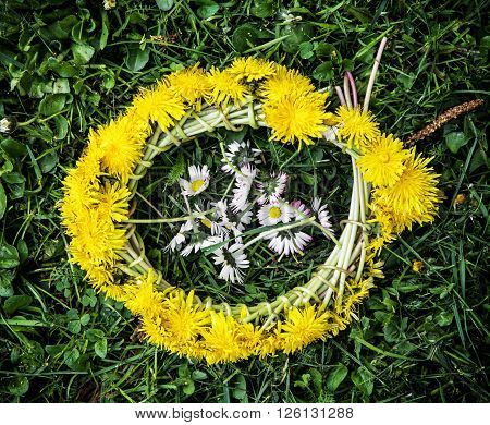 Wreath of dandelions with ox-eye daisies in the green grass. Seasonal natural scene.