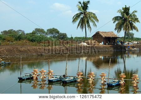 NANDIVADA,KRISHNA DT,AP,INDIA-APRIL 1 :People dig tanks in agricultural lands and do fish farming on April 1,2016 in Nandivada,Krishna dt,AP,India.aerators and hut are seen at the water tank.