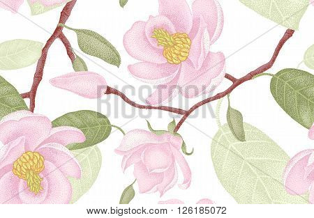 Seamless vector floral pattern. Illustration magnolia Victorian style. Vintage luxury decoration magnolia. Series floral design unique technique. Magnolia tree branch with flowers on white background.