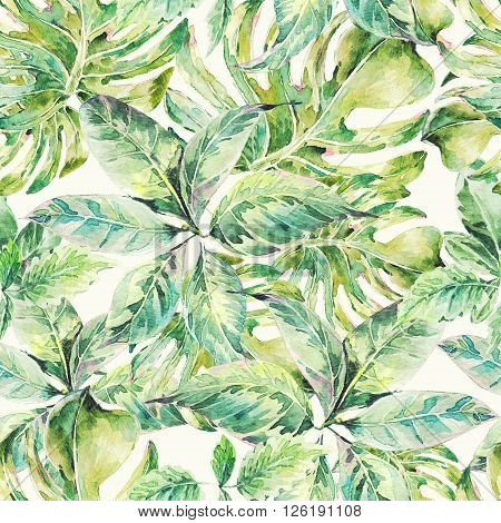 Natural leaves exotic watercolor seamless pattern, botanical summer illustration on white background