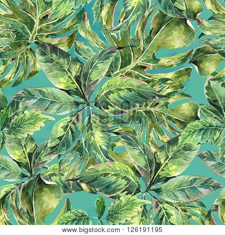 Summer leaves exotic watercolor seamless pattern, botanical natural illustration