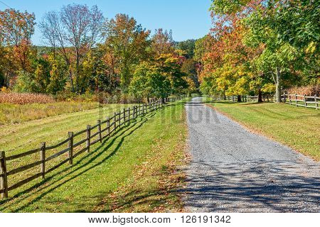 A gravel road passes though Fall foliage in rural Morris County New Jersey.