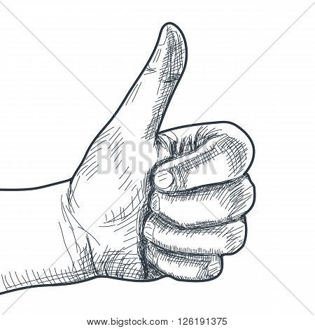 Hand drawn hand with thumb up. Vector illustration