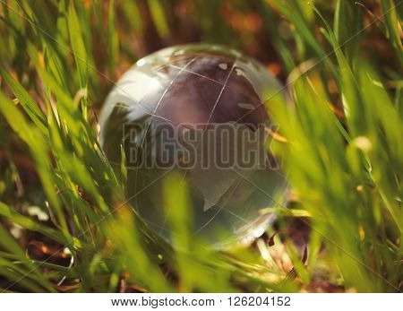 Crystal glass sphere globe lying in green grass. Concept for environment ecology and green world. Macro no models