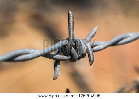 Barbed wire fence down the old look sharp. A look around the middle obviously blurred.