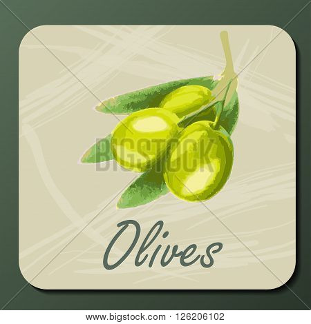 green olive on a branch with leaves on a textured card with text. Olive branch hand draw style. Olive hand draw emblem. Green olive label. Olive vector illustration isolated. Olive card design