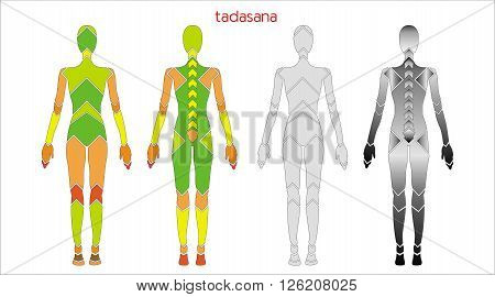 illustration of a man in the pose of the mountain tadasana yoga on the white background