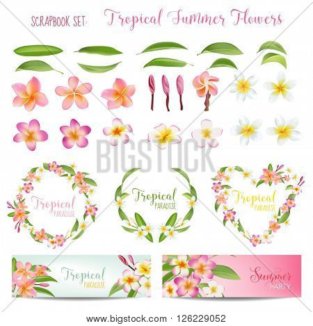 Tropical Flowers and Leaves Set. Exotic Plumeria Flower. Floral Wreaths and Banners. Vector