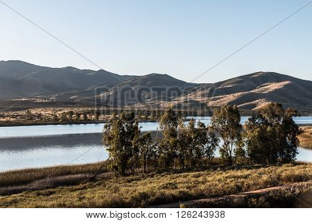 Group of trees with lake and mountain range in the distance at Lower Otay Lake in Chula Vista, California.
